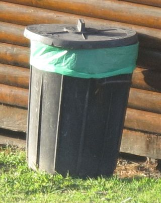 Not baboon proof bin