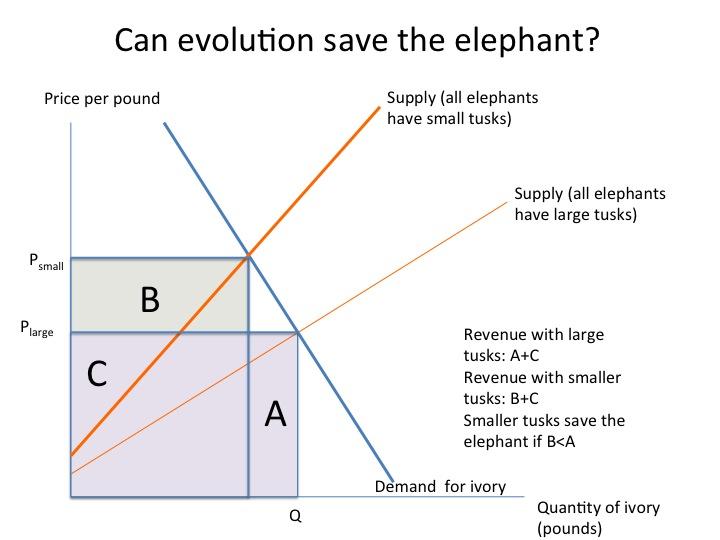 Elephants_revised_2